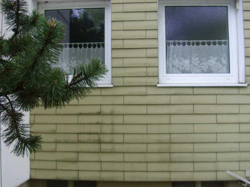 Eternit Fassade vor der Reinigung