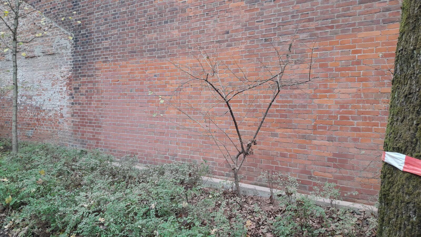 grafitti-entfernung09
